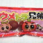 駄菓子再び① ~魅惑のウメ系駄菓子編~